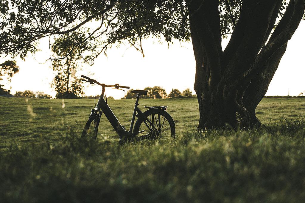 E bike opgesteld naast pitoresque boom