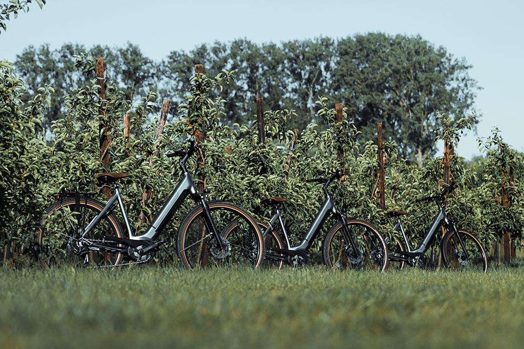 Unieke fietsarrangementen. E bikes aan een boomgaard