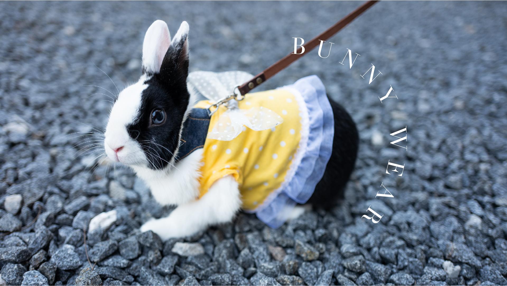 Bunny Wear