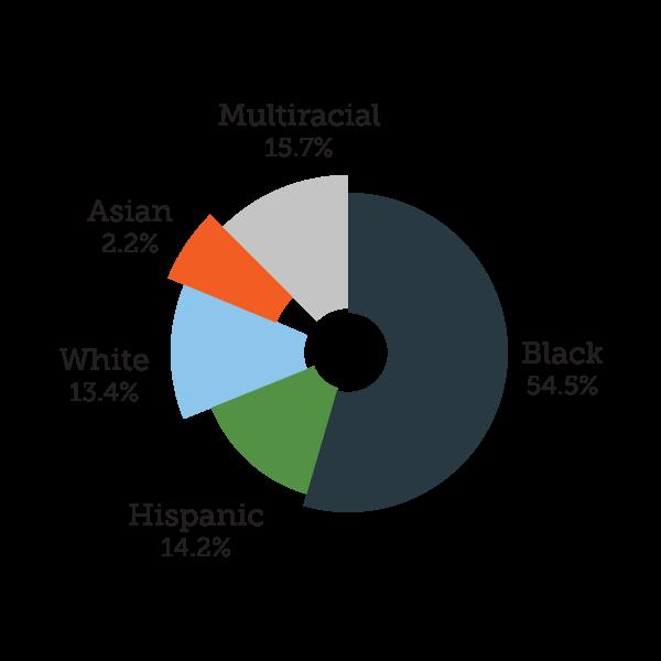 One City Schools - Racial Demographics
