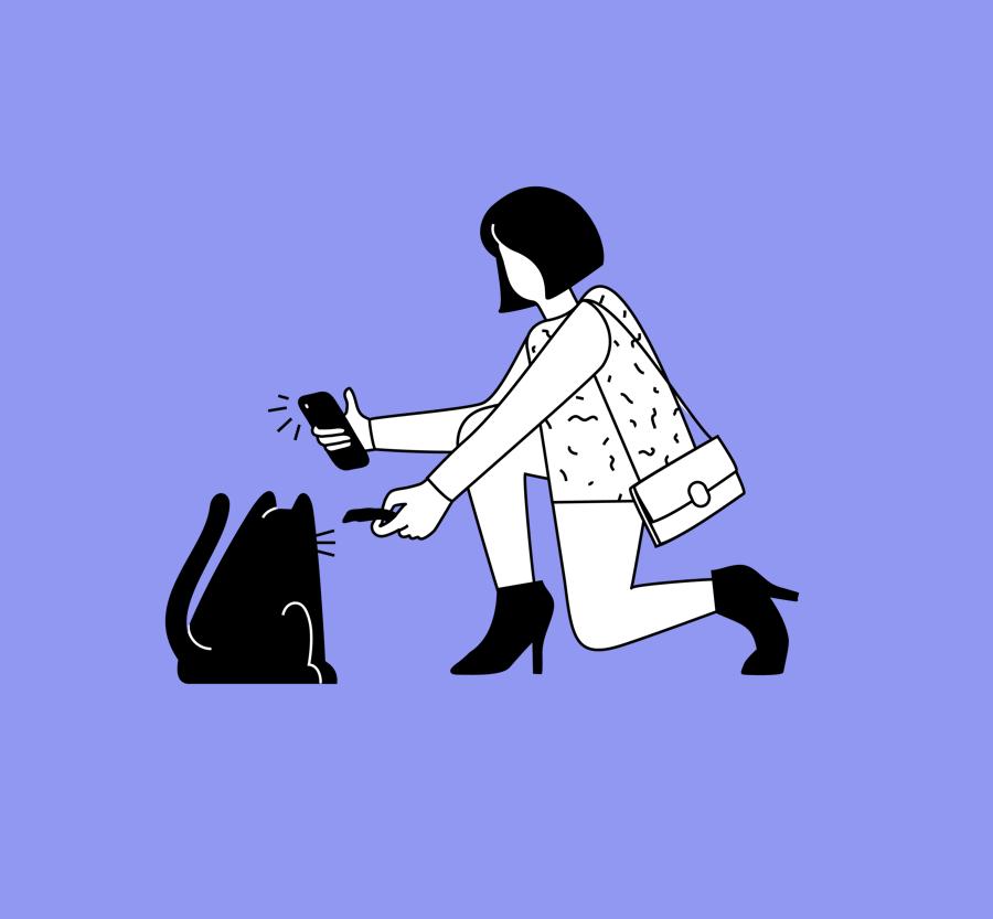 Phonies illustration example