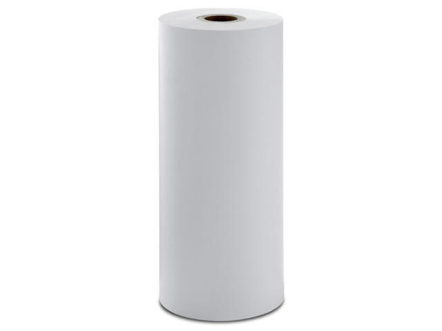 Series-3 Fluorometer Printer Paper Large Roll