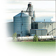 DDGs/Ethanol