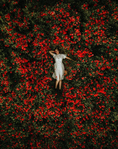 Woman lying in a bed of roses