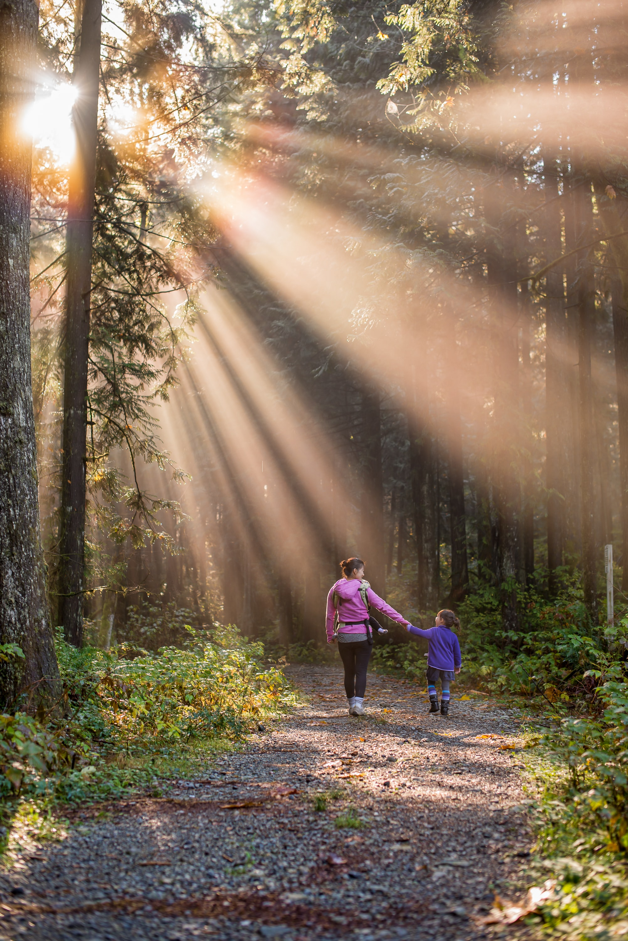 Mother and daughter walking in a woodland, with sun-ray shinning down