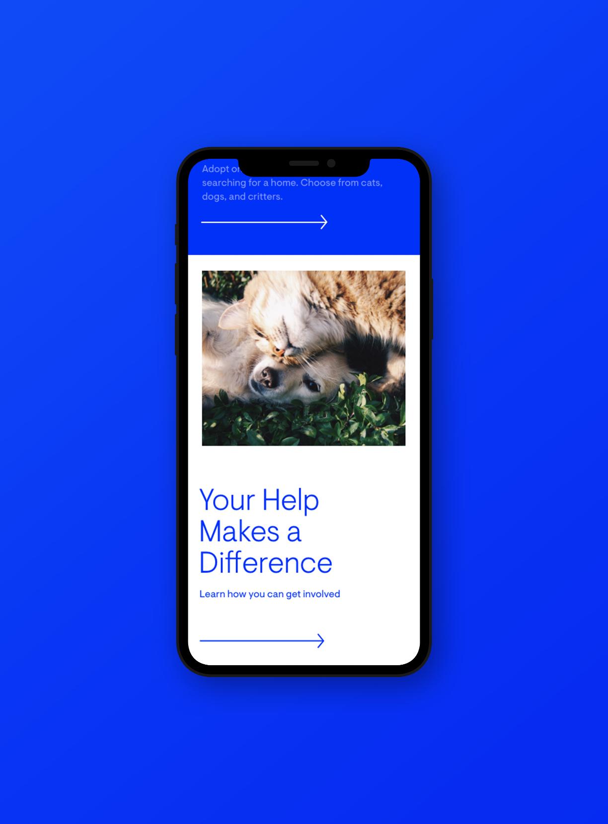 CHS mobile version mockup on blue background