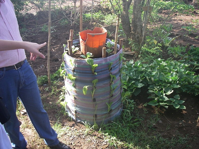 Vertical greywater filter used as a kitchen garden
