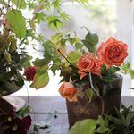 https://www.instagram.com/florist_huiwon