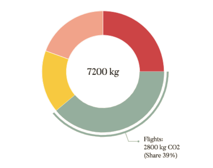Graphic design of the carbon donut – The result of Spark Sustainability's carbon calculator.
