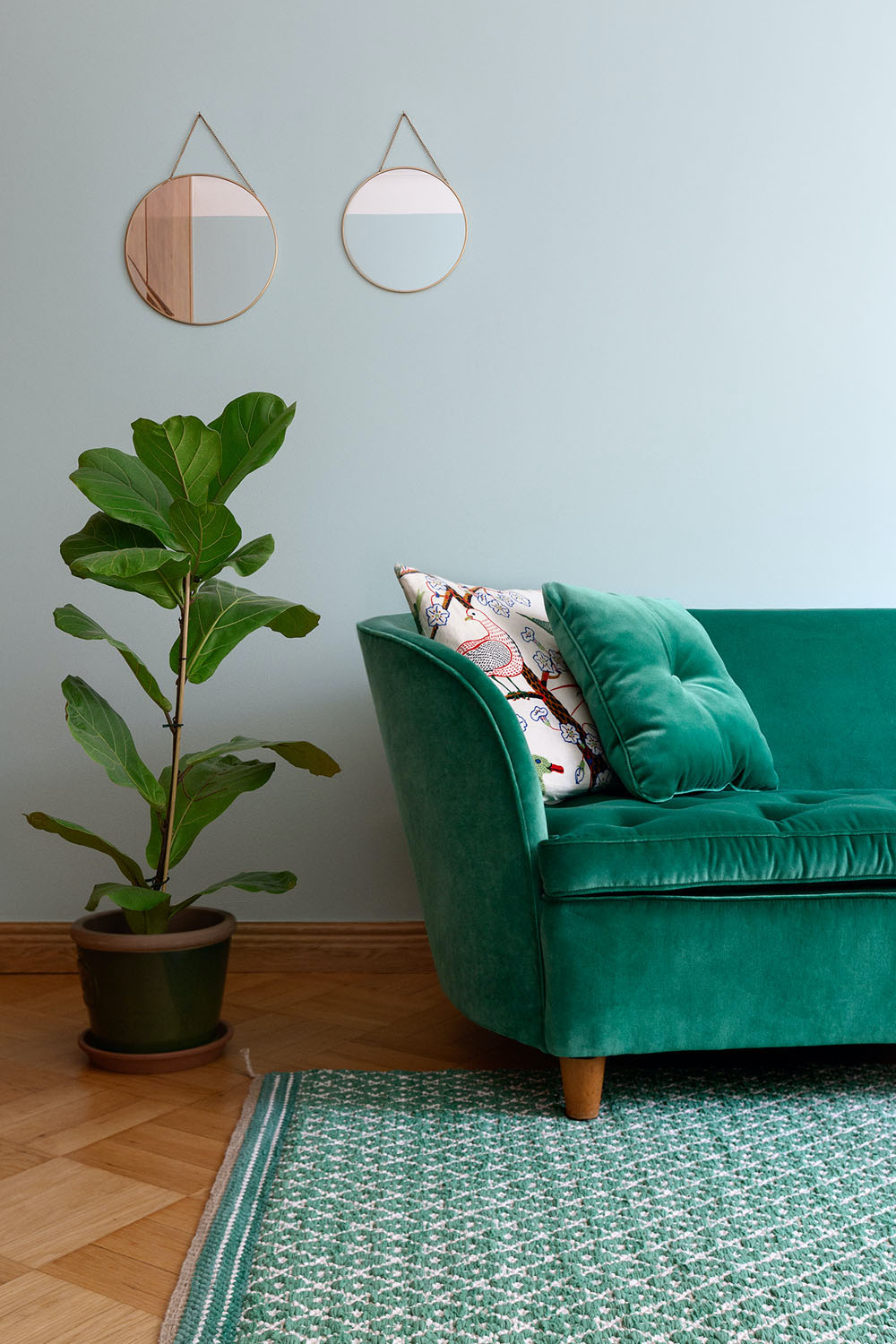 A turquoise sofa on top of a turquoise rug, next to a house plant.