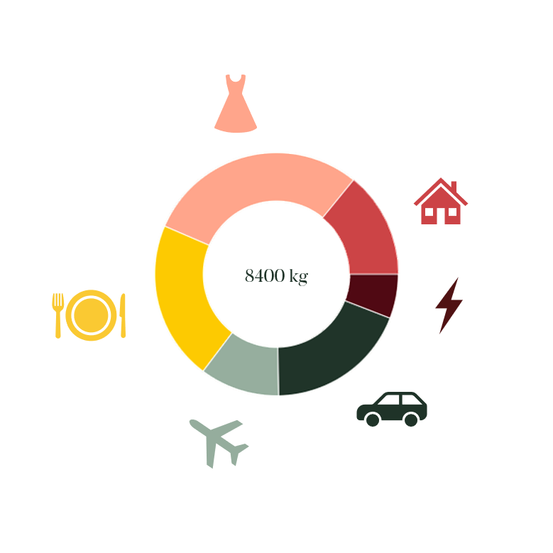 Picture of the Carbon Donut lifestyle carbon calculator.