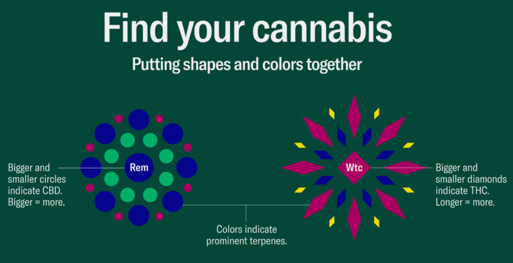 cannabinoids and terpenes shapes and forms