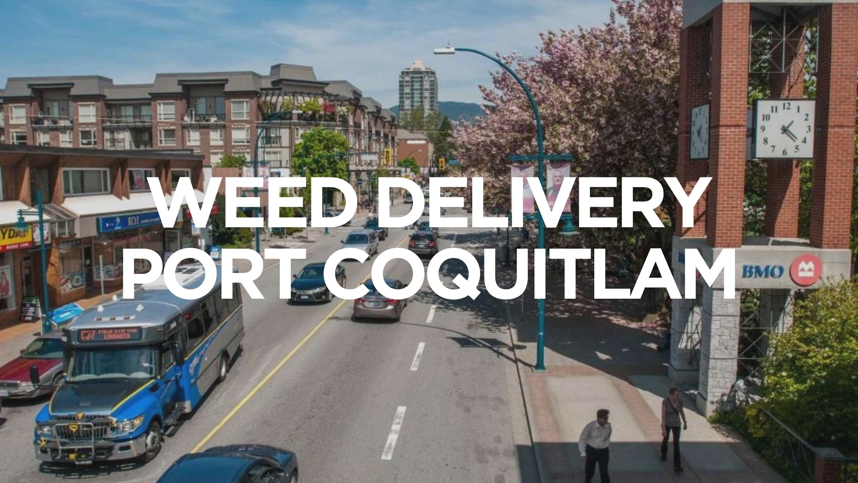 Weed Delivery Port Coquitlam