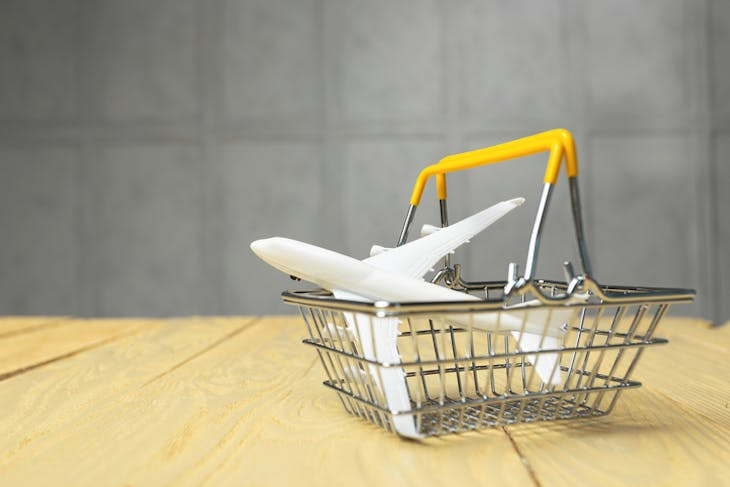 Model airplane in shopping basket