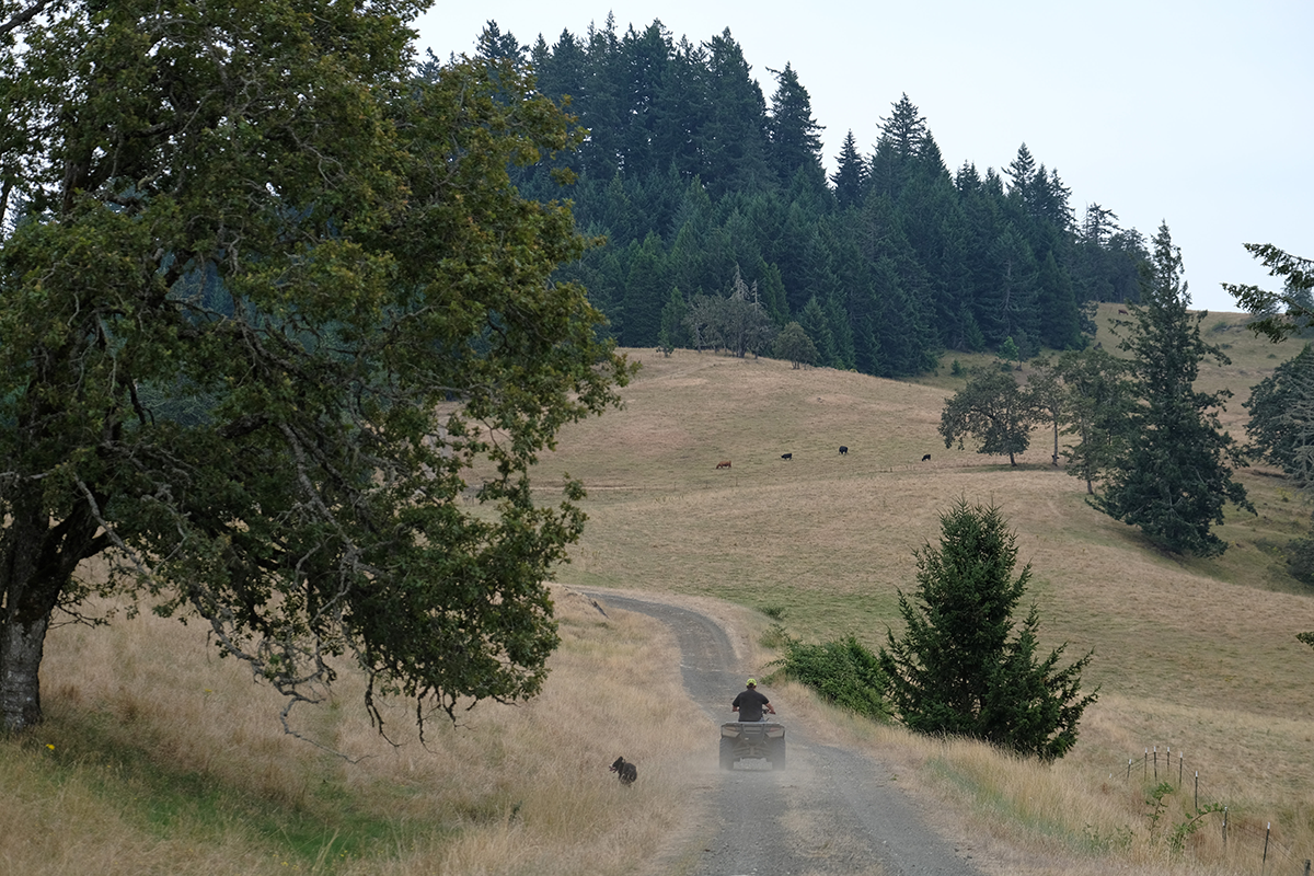 Bill Gow rides on his property in Douglas County, Oregon. The Pacific Connector pipeline would cut through his land.