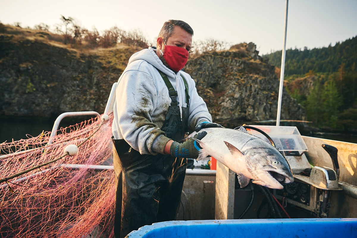 Man gillnet fishes the Columbia River for salmon