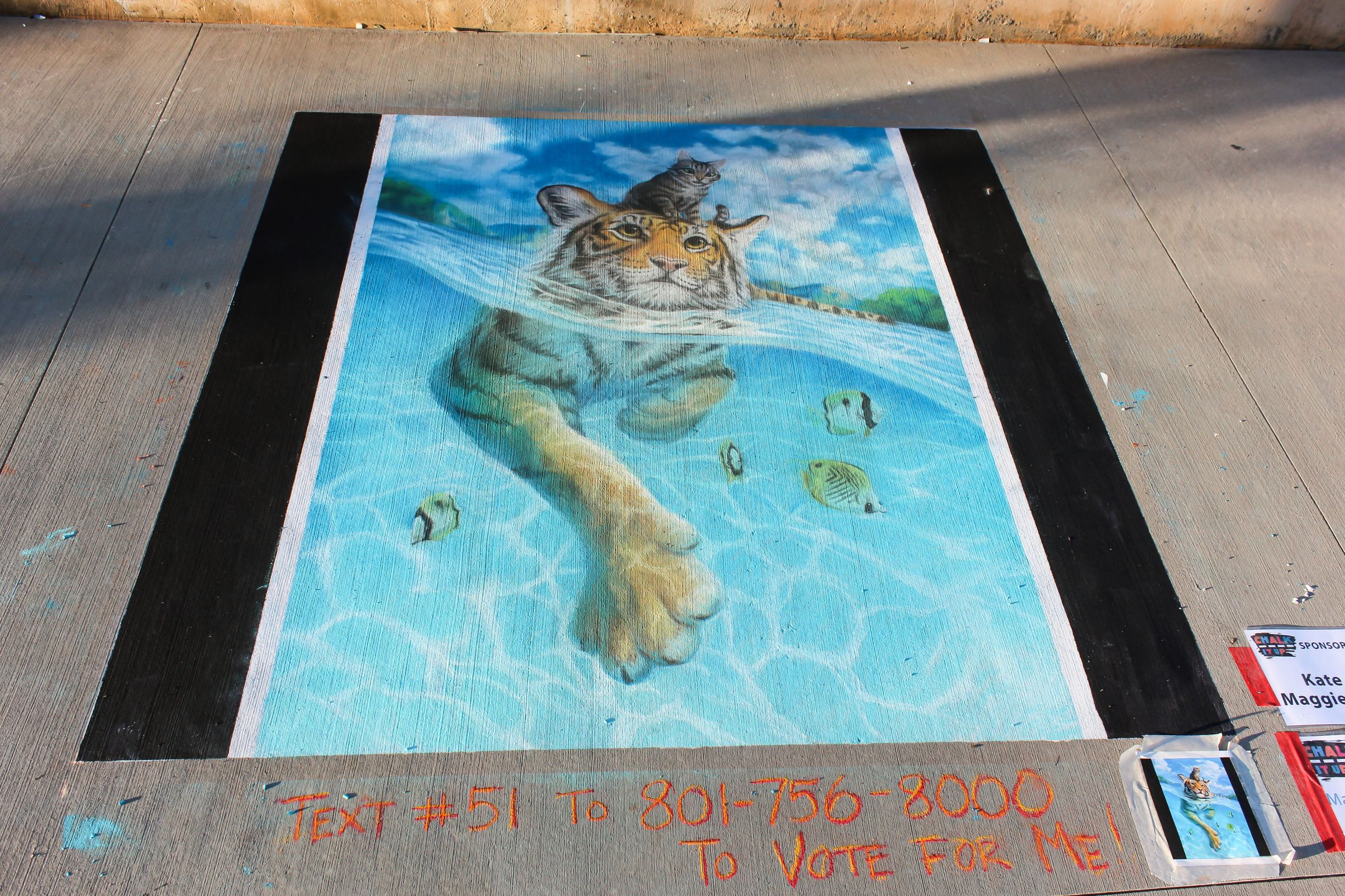 A cat on top of a swimming tiger