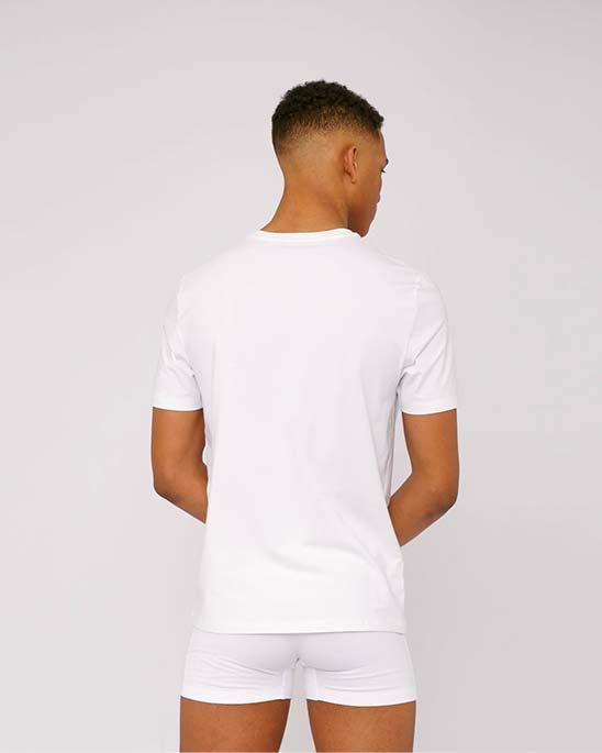 Organic Basics — Mens organic t-shirt