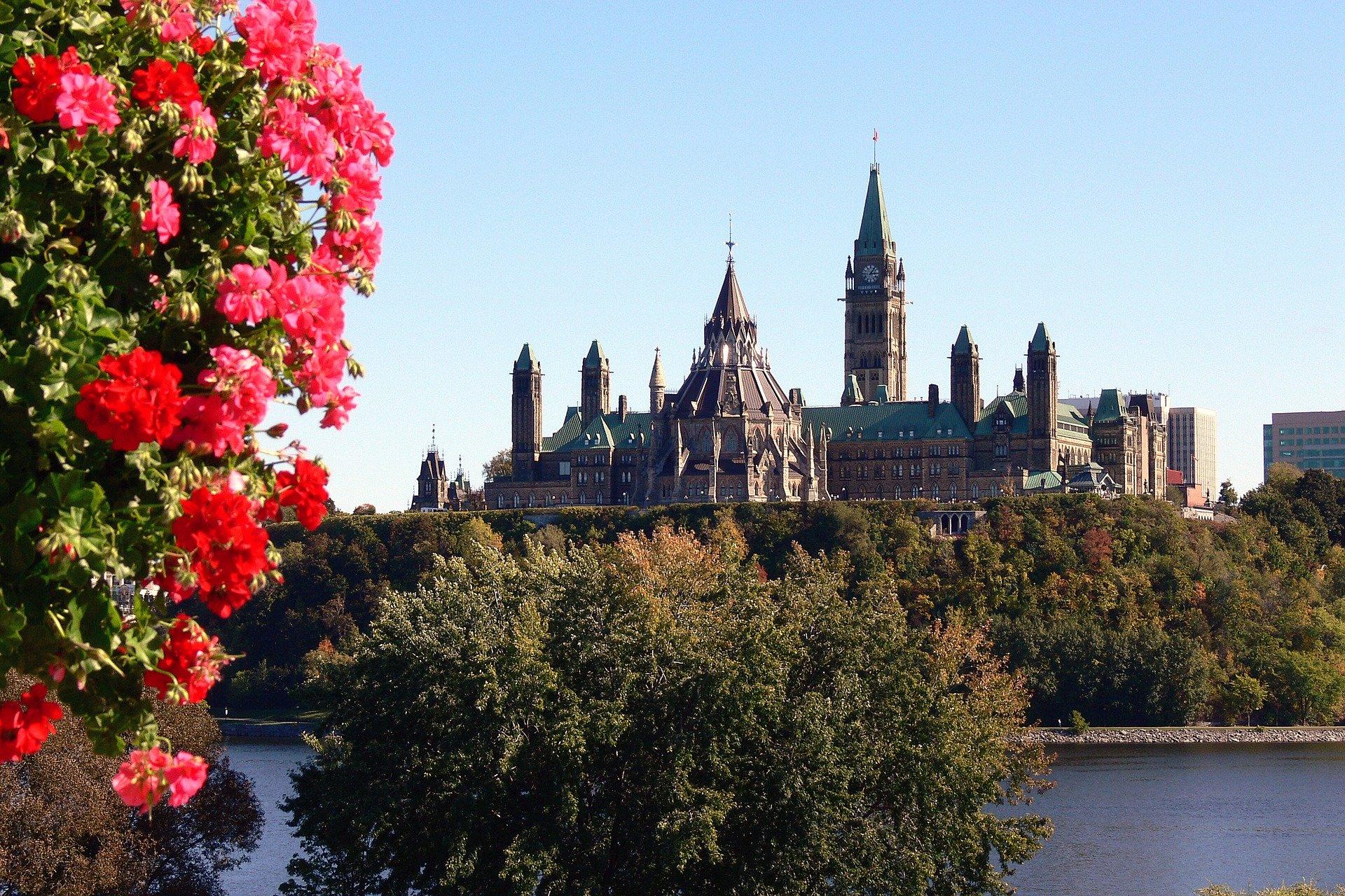 Noticia Solutions Ottawa