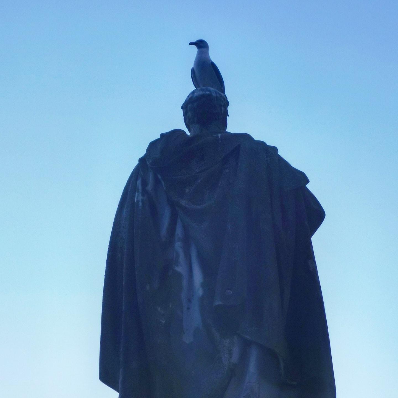 #statuepigion