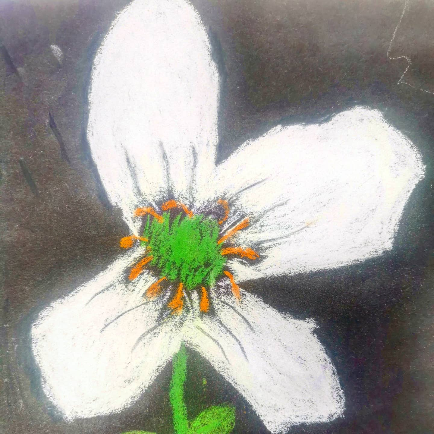 Wonderful pastel by my student M age 8