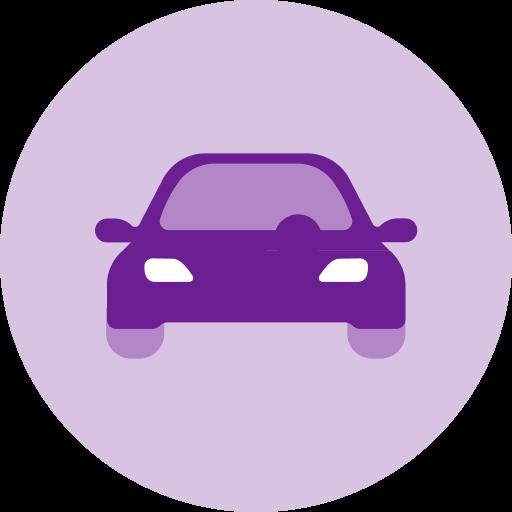 Icon of a Tesla sedan