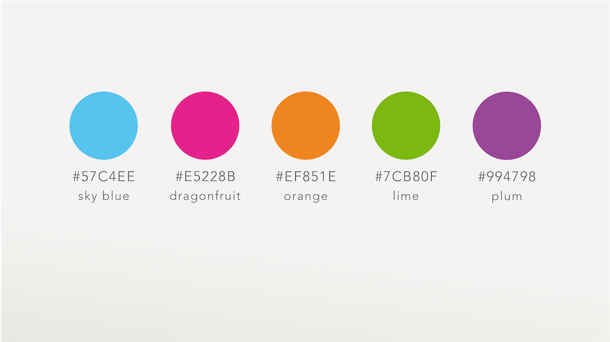 Chiropractic clinic branding colour palette