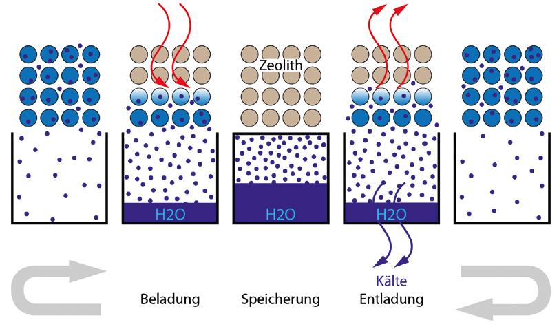 Sorptionsprozesse im System Zeolith-Wasser