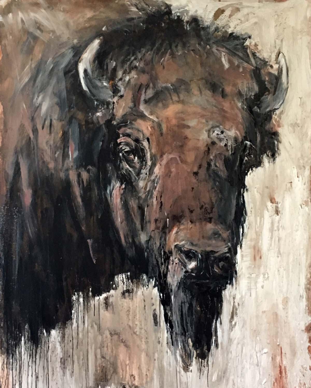Bison 7