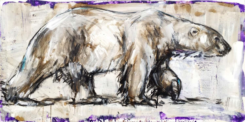 Polar Bear 31