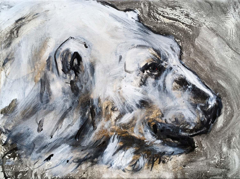 Polar Bear 13