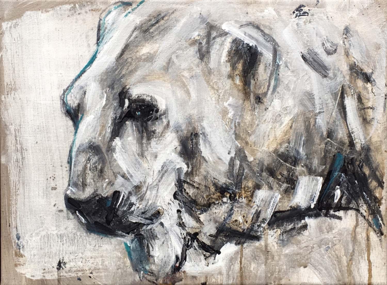 Polar Bear 21