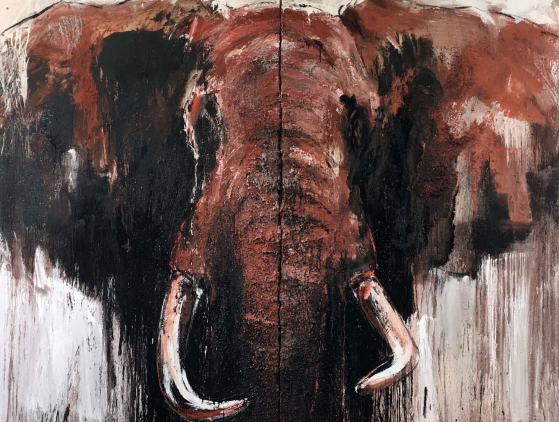Elefant 25