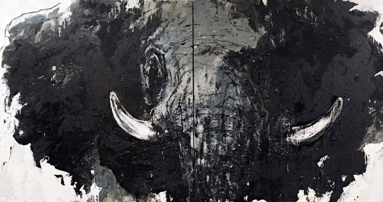 Elefant 81