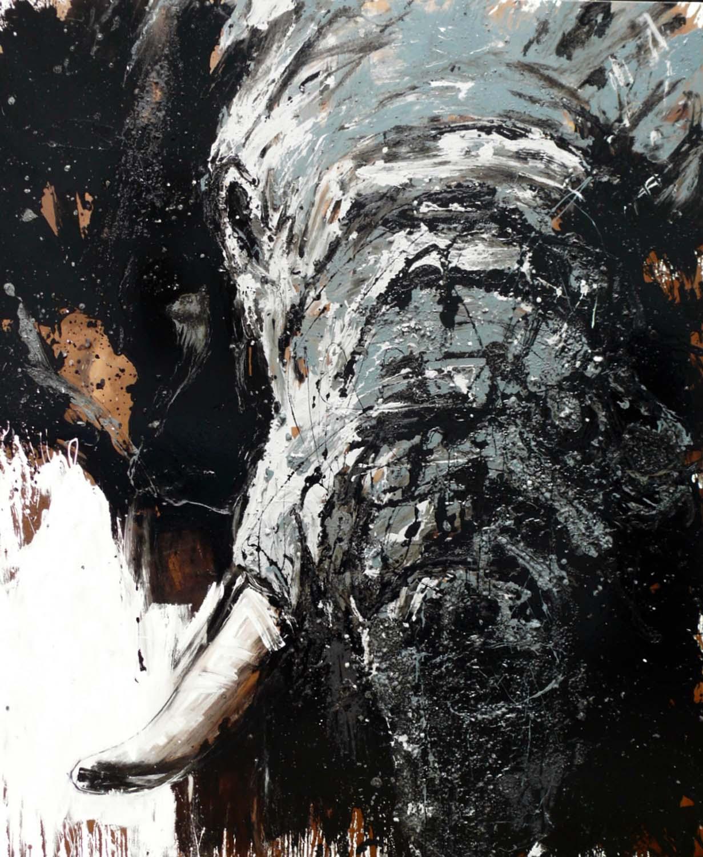 Elefant 82