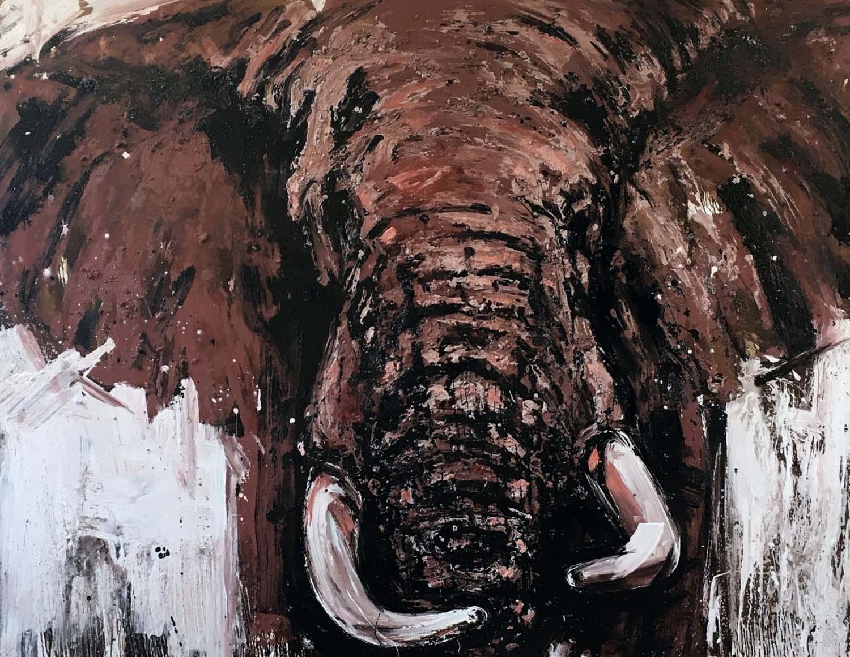 Elefant 98