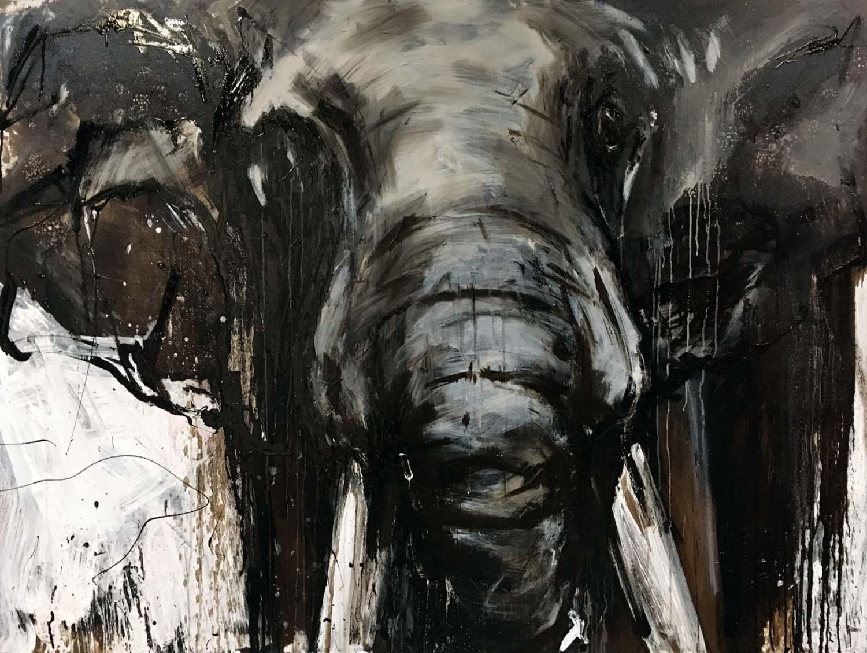 Elefant 102