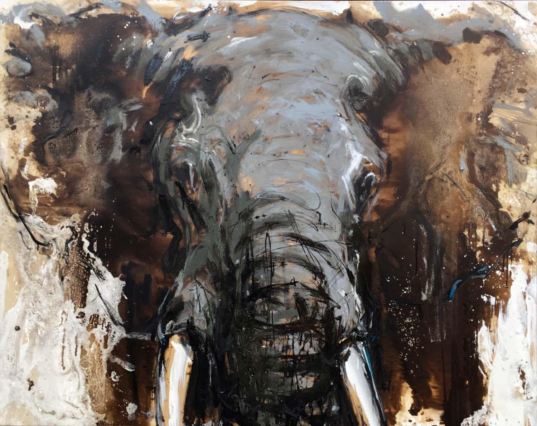 Elefant 107