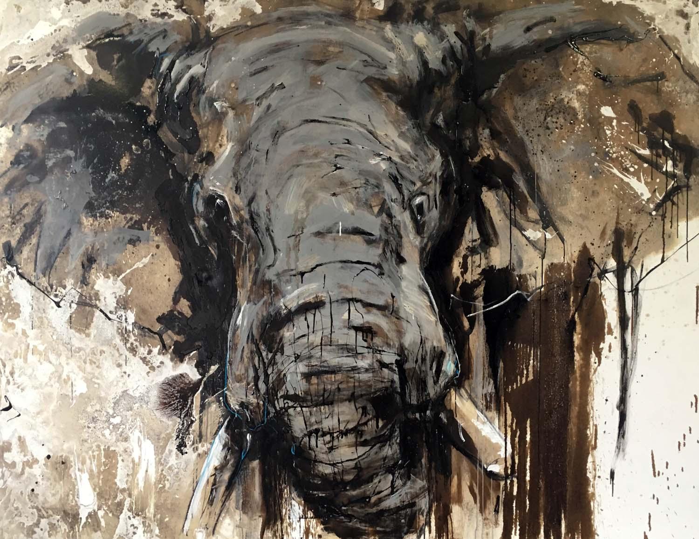 Elefant 109