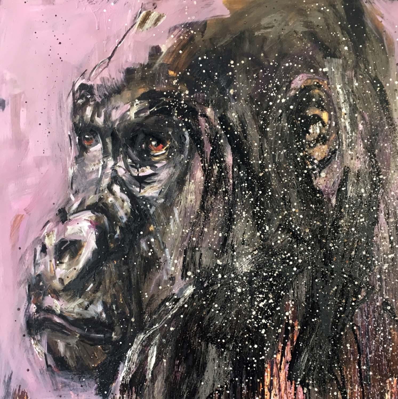 Gorilla 47