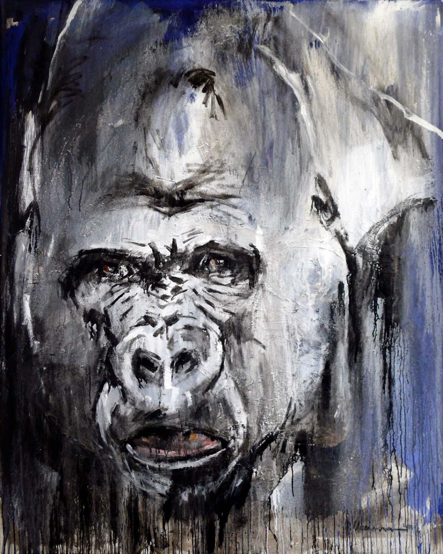 Gorilla 20