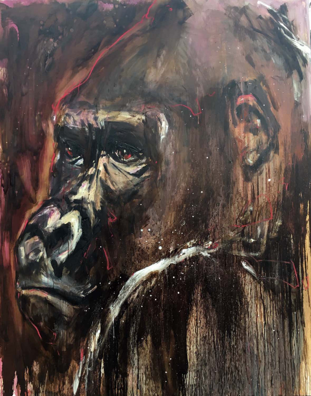 Gorilla 23
