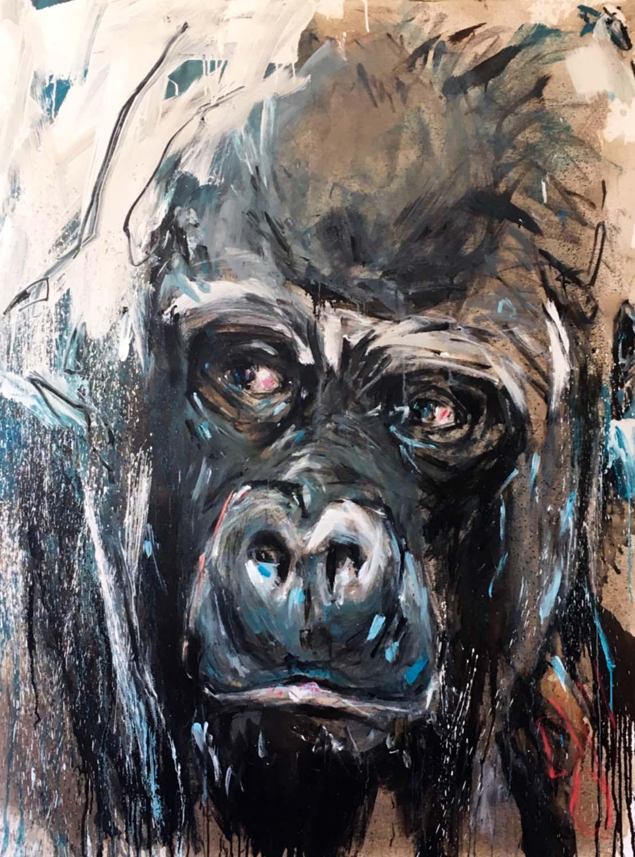Gorilla 75