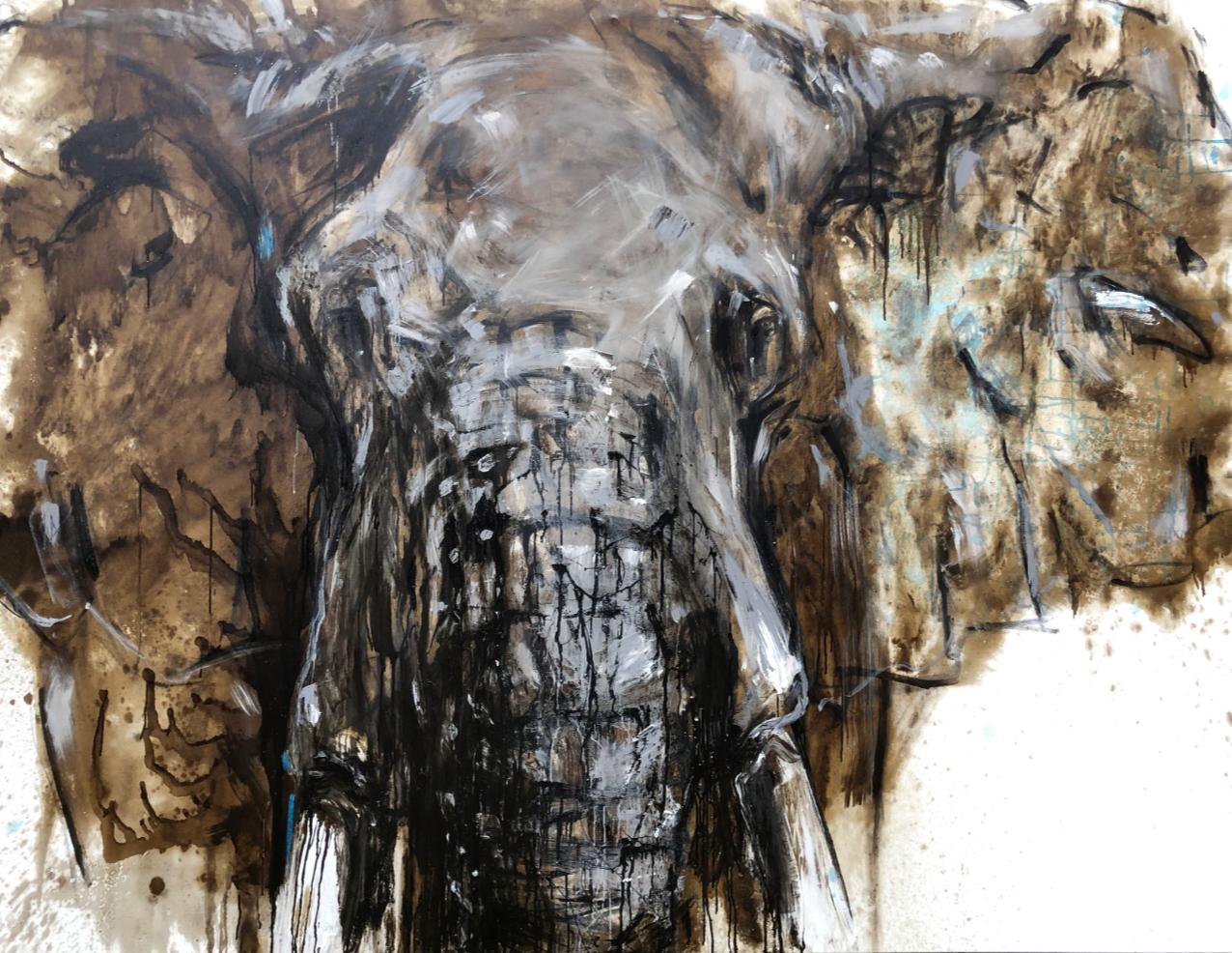 Elefant 112