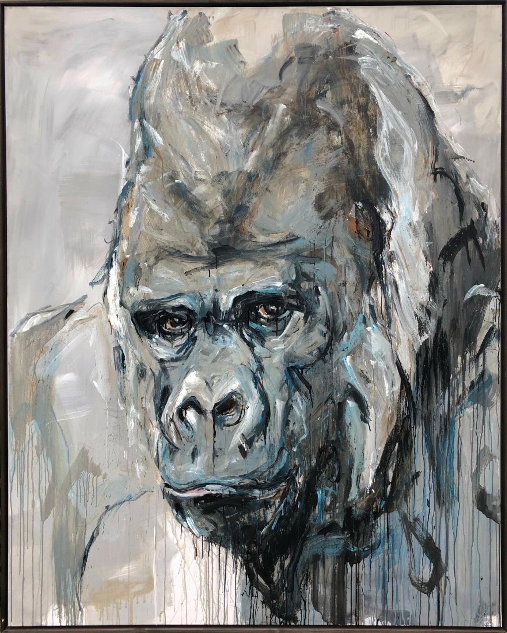 Gorilla 84