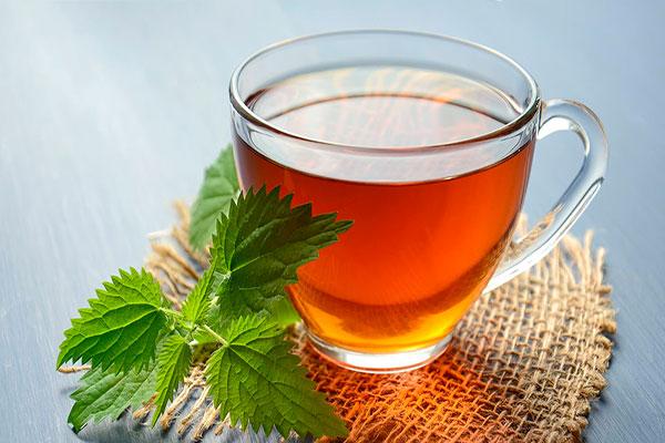 cup nettle tea