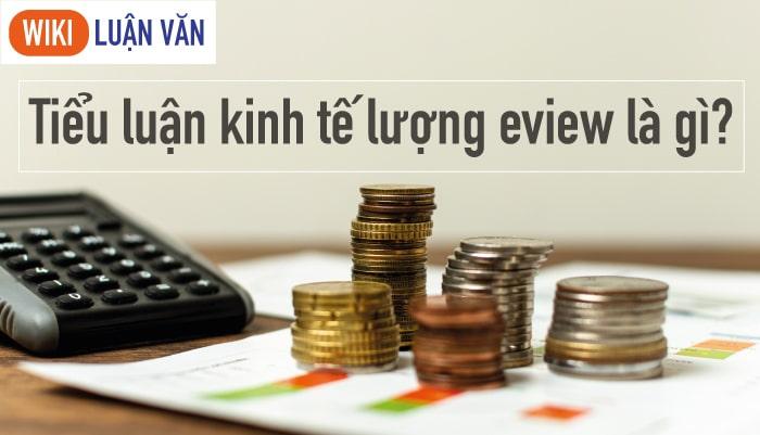 Tiểu luận kinh tế lượng eview là gì?