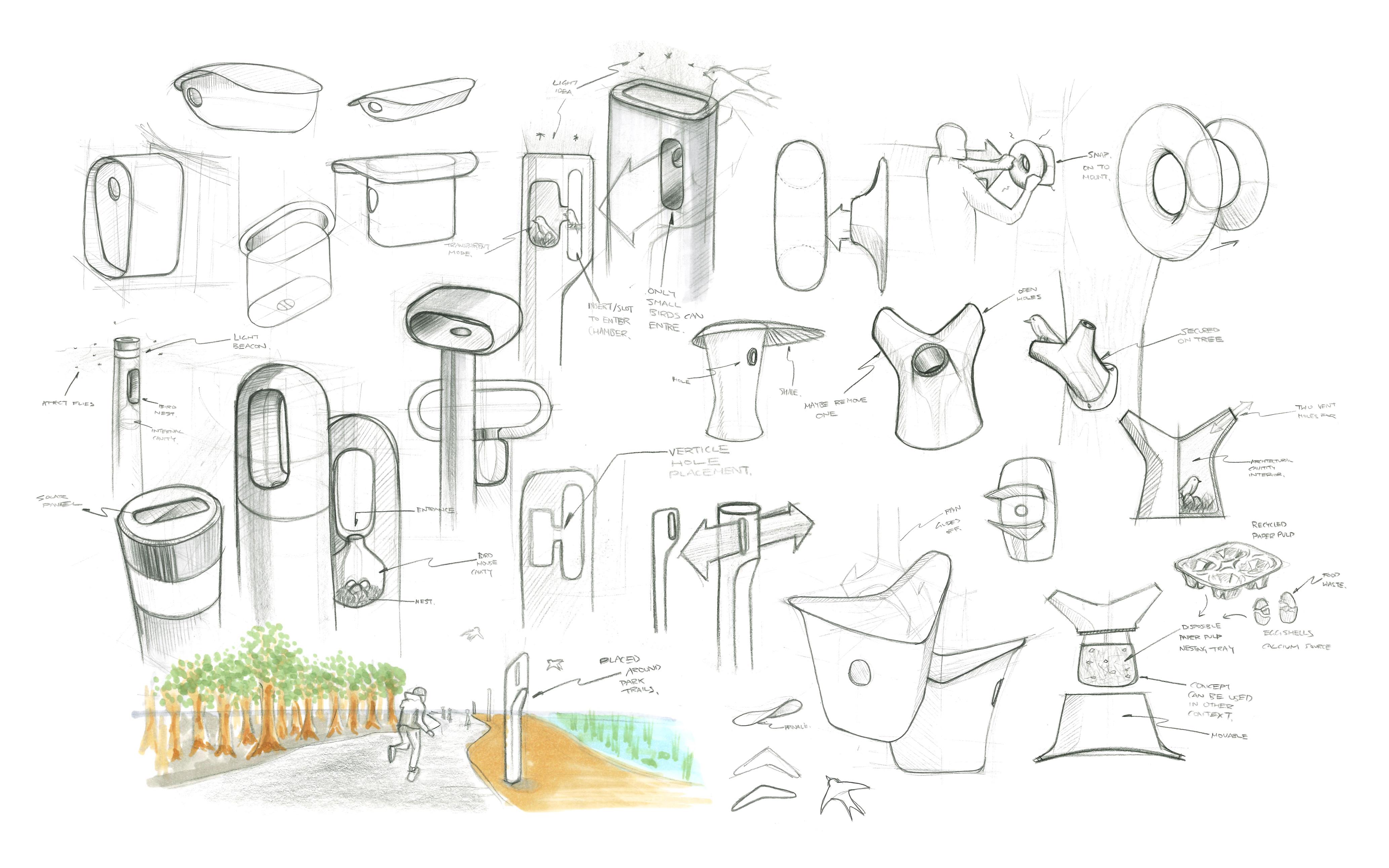 Early developmental sketches