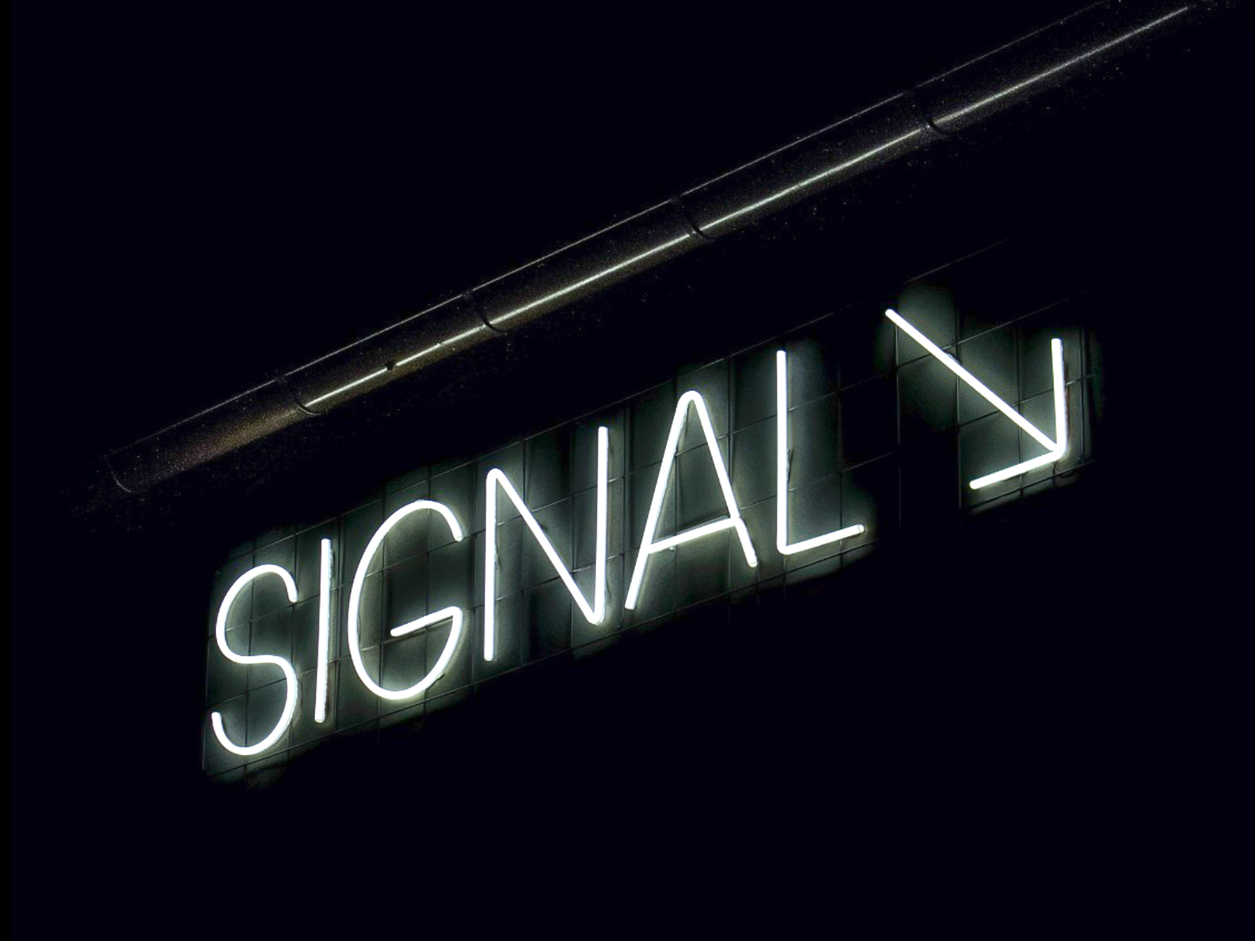 Signal Center for Contemporary Art neon sign design