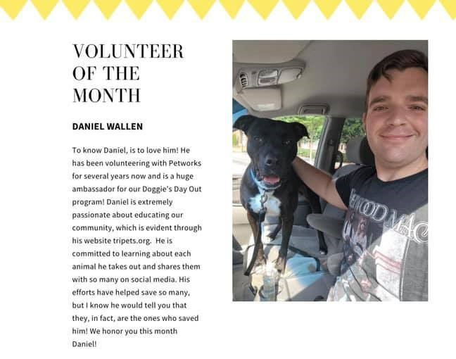 Petworks newsletter from July, which named Daniel Wallen their Volunteer of the Month